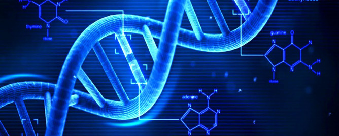 <br>Whole-exome DNA sequencing - a technology that saves time and money by sequencing only protein-coding regions and not the entire genome - may routinely miss detecting some ge.... &lt;a href=&#39;http://science.psu.edu/news-and-events/2017-news/Girirajan4-2017&#39; target=&#39;_blank&#39;&gt;More&lt;/a&gt;