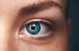"<br>An extreme case of ""fussy"" or ""picky"" eating caused a young patient's blindness, according to a new case.clinicians consider nutritional optic neuropathy in any patients with....<a href='http://www.bristol.ac.uk/news/2019/august/diet-study.html' target='_blank'>More</a>"
